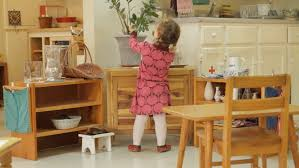 Montessori Education The Importance of Direction and Intervention