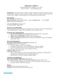 Criminal Justice Resume Examples Templates Physic Minimalistics
