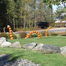 Pumpkin Festival Maine by Sharon Lovejoy New England Autumn