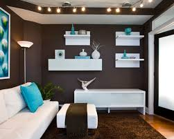 brown and teal houzz