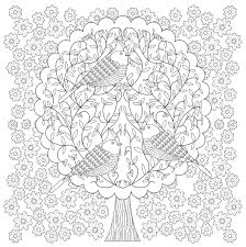 Believe Adult Coloring Book 31 stress relieving designs Studio