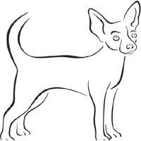 Dog Breed Coloring Pages Surfnetkids