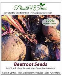 best store buy organic seeds bulbs buy organic