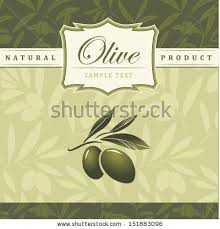 Vector olive oil Decorative olive branch For label pack Olive pattern