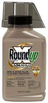 RoundupR Concentrate Extended Control Weed Grass Killer Plus Preventer