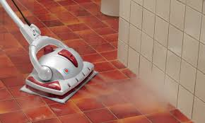 Steam Clean Wood Floors by Best Steam Cleaners For Your Home Overstock Com