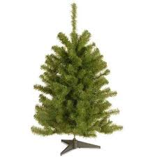White Unlit Christmas Tree Eastern Spruce Artificial Flocked