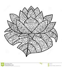 Royalty Free Vector Download Lotus Flower Coloring Book