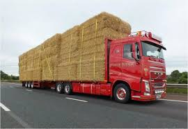 Hay & Straw Trailers   McCauley Trailers Hay For Sale In Boon Michigan Boonville Map Outstanding Dreams Alpaca Farm Phil Liske Straw Richs Cnection Peterbilt 379 At Truckin Kids 2013 Youtube Bruckners Bruckner Truck Sales Lorry Stock Photos Images Alamy Mitsubishi Raider Wikipedia For Lubbock Tx Freightliner Western Star Barmedman Motors Cars Sale In Riverina New South Wales On Economy Mfg Dennis Farms Equipment Auction The Wendt Group Inc Land And