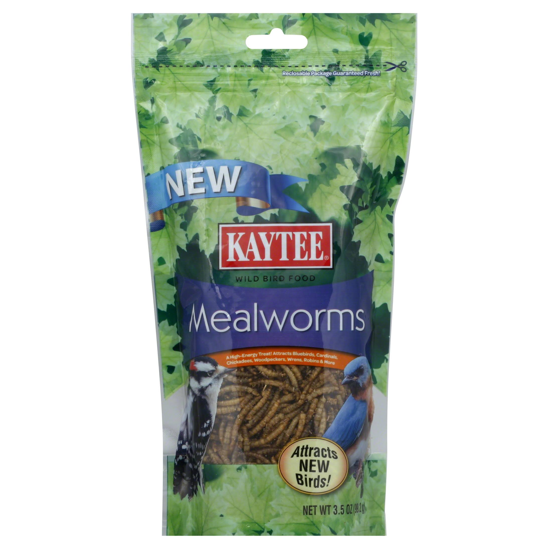 Kaytee Products Mealworm Wild Bird Food - 3.5oz