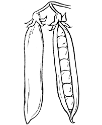 Vegetable Coloring Pages 7