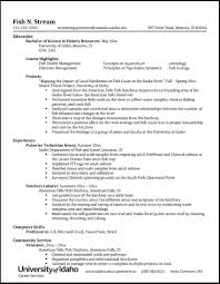 Resumes And CVs - Career Services - University Of Idaho Easy Resume Examples Fresh Unique Areas Expertise How To Write A College Student Resume With Examples 10 Chemistry Skills Proposal Sample Professional Senior Marketing Executive Templates Why Recruiters Hate The Functional Format Jobscan Blog Best Finance Manager Example Livecareer Describe In Your Cv Warehouse Operative Myperfectcv Infographic Template Venngage 7 Ways Improve Your Physical Therapist Skills Section 2019 Guide On For 50 Auto Mechanic Mplate Example Job Description