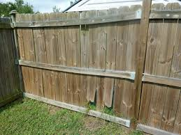 100 Building A Paling Fence Why Is My Wood Warping Twisting Moving Shrinking
