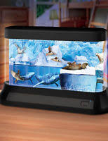 discovery kids aquarium l sale 20 deals from 13 99