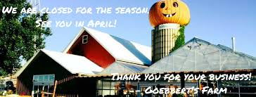 Goebbert Pumpkin Patch In Barrington Il by Goebbert U0027s Farm South Barrington Home Facebook