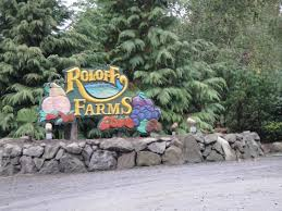 Roloff Pumpkin Patch by 35 Best Roloffs Images On Pinterest Roloff Family Beautiful