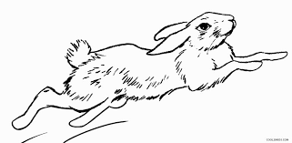 Animal Ears Coloring Printable Rabbit Pages For Kids Cool2bKids