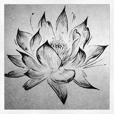Best 25 White Lotus Tattoo Ideas On Pinterest