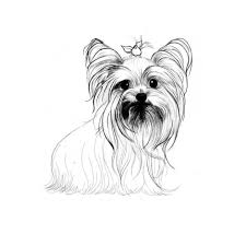 YORKIE Colouring Pages 940x940