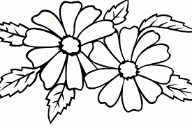 Jasmine Flower Coloring Pages Of Printable