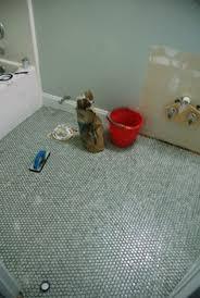 the tile shop hex gloss moss kitchen bathroom