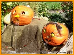 Central Wisconsin Pumpkin Patches by Pumpkin Patch Hay Rides Corn Maizes Halloween Activities All