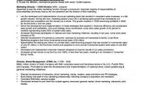 Sample Resume Of Executive Vice President Luxury Free Senior Marketing Director
