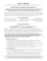 Sample Investment Banking Resume Bank President Template Health