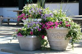 Flowers : Beautiful Flowers And Gardens In House Home Garden ... Painted Flower Pots For The Home Pinterest Paint Flowers Beautiful House With Nice Outdoor Decor Of Haing Creative Flower Patio Ideas Tall Planter Pots Diy Pot Arrangement 65 Fascating On Flowers A Contemporary Plant Modern 29 Pretty Front Door That Will Add Personality To Your Garden Design Interior Kitchen And Planters Pictures Decorative Theamphlettscom Brokohan Page Landscape Plans Yard Office Sleek