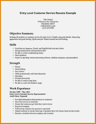 Resume Summary Examples Entry Level Statement