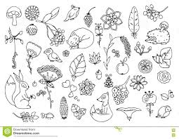 Vector Illustration Zen Tangle Set The Forest Animals And Flowers Doodle Drawing