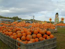 Best Atlanta Area Pumpkin Patch by The Best Places For Autumn Apple Picking Near Philly