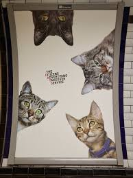 service cats a herd of cats fill advertising placements at a stop