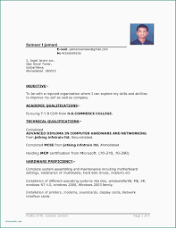 Resume Sample For Job Application In Philippines Best Format