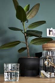schlafzimmer organisation zum erholen ikea pflanzen ikea