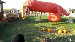 Pumpkin Farms Illinois Goebberts by Pumpkin Eating Dinosaur Youtube
