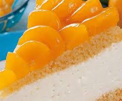 mandarinen quark kuchen befriedigend mandarinen kokos