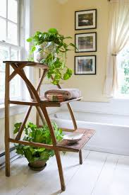 Best Plant For Your Bathroom by Shower Plants The Best Plants For Bathrooms