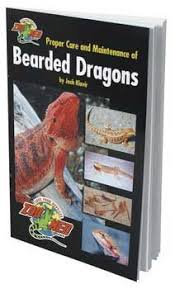 Bearded Dragon Heat Lamp Amazon by 51 Best Bearded Dragon Images On Pinterest Dragon Pet Reptiles