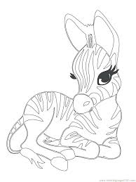Full Image For Cute Baby Zebra Coloring Page Free Printable Pages Zoo Animals