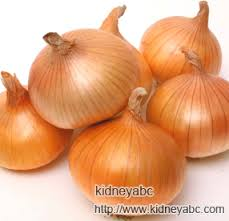 Are Onions Good Diet For Nephrotic Syndrome Kidneyabc