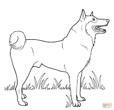 Coloring Page Dog Dogs Pages Free Pictures
