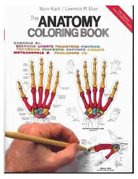 Anatomy Coloring Book Example Muscles Free Body