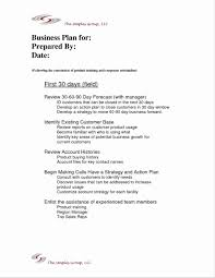 30 Day Business Plan Template Example Of Unique The First 90 Days