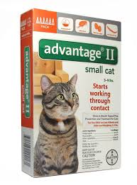 flea treatment for cats advantage ii topical flea treatment for cats 5 9 lbs