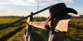 Leland Sheds Lampasas Tx 10 best things made in texas leland u0027s cabins