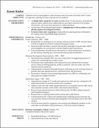 Resume For Childrens Services Best Sample Customer Service Agent Ideas