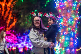 ZooLights Enjoy The Show Phoenix Zoo