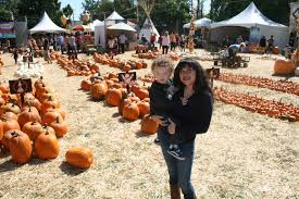 Pumpkin Patch With Petting Zoo by Mr Bones Pumpkin Patch Yoplait And Los Angeles Regional Food