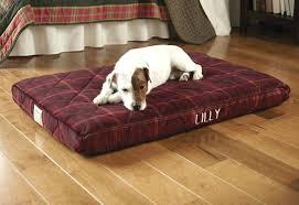 orvis dog beds on sale restate co